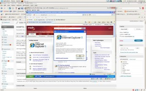 Screenshot of a Running IE8 install on Ubuntu using VirtualBox
